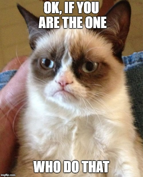 Grumpy Cat Meme | OK, IF YOU ARE THE ONE WHO DO THAT | image tagged in memes,grumpy cat | made w/ Imgflip meme maker