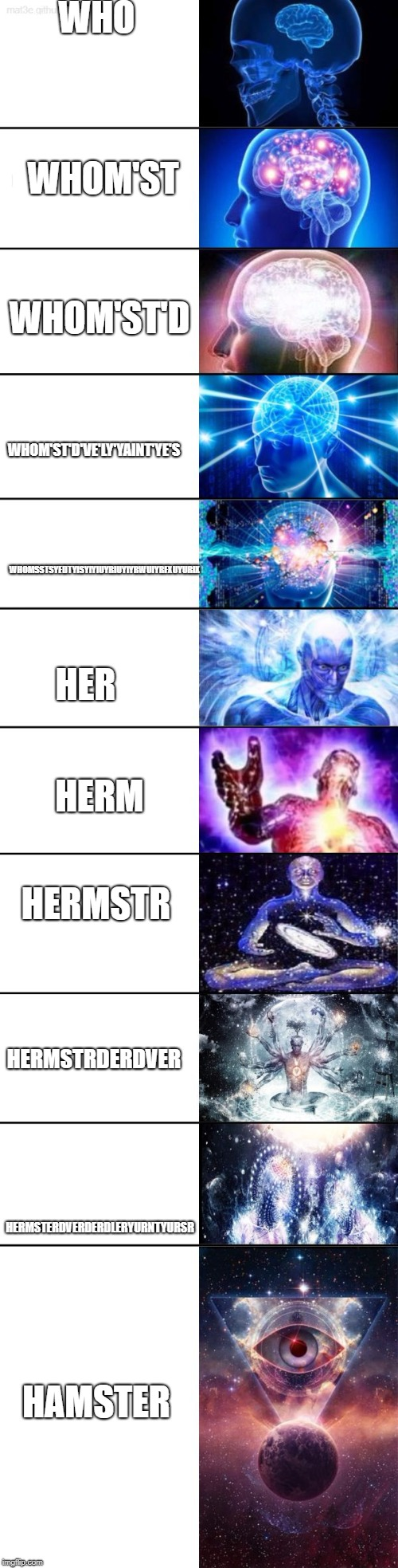 Extended Expanding Brain | WHO HERMSTERDVERDERDLERYURNTYURSR WHOM'ST WHOM'ST'D WHOM'ST'D'VE'LY'YAINT'YE'S WHOMSSTSYEDTYISYIYIUYRIUYIYRWUIYRFXUYURIX HER HERM HERMSTR HE | image tagged in extended expanding brain | made w/ Imgflip meme maker
