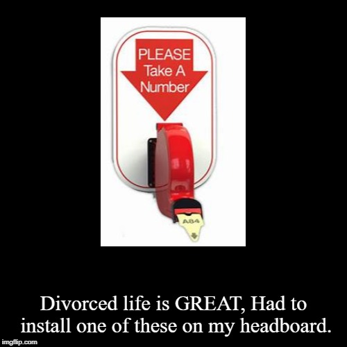 Take a number ladies | Divorced life is GREAT, Had to install one of these on my headboard. | image tagged in funny,demotivationals,funny memes,ex-wife,marriage,divorce | made w/ Imgflip demotivational maker
