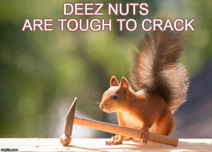 DEEZ NUTS ARE TOUGH TO CRACK | made w/ Imgflip meme maker