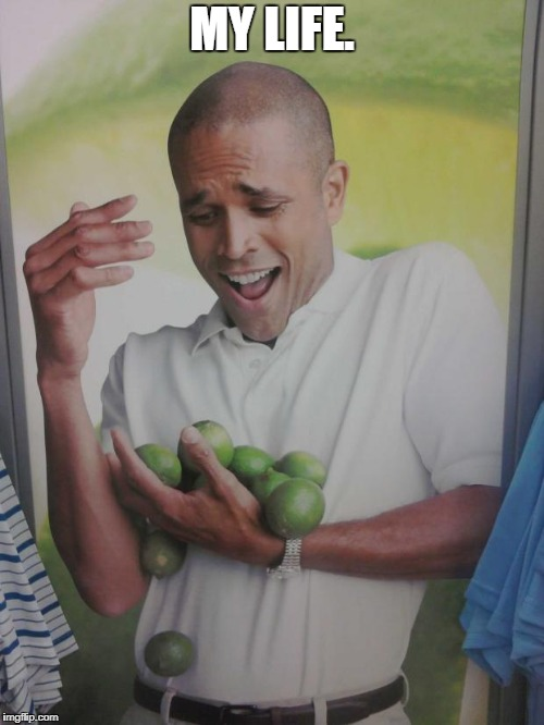 My life's Stability | MY LIFE. | image tagged in memes,why can't i hold all these limes | made w/ Imgflip meme maker