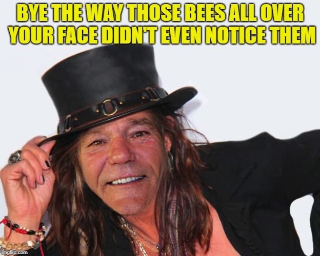 louie tyler | BYE THE WAY THOSE BEES ALL OVER YOUR FACE DIDN'T EVEN NOTICE THEM | image tagged in louie tyler | made w/ Imgflip meme maker
