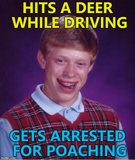 Oh deer... :) | HITS A DEER WHILE DRIVING GETS ARRESTED FOR POACHING | image tagged in memes,bad luck brian,deer,poaching | made w/ Imgflip meme maker