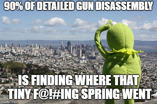 90% OF DETAILED GUN DISASSEMBLY IS FINDING WHERE THAT TINY F@!#ING SPRING WENT | image tagged in kermit searching | made w/ Imgflip meme maker