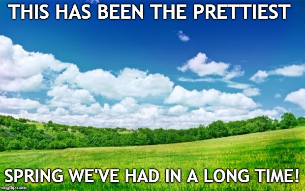 beautiful nature | THIS HAS BEEN THE PRETTIEST SPRING WE'VE HAD IN A LONG TIME! | image tagged in beautiful nature | made w/ Imgflip meme maker