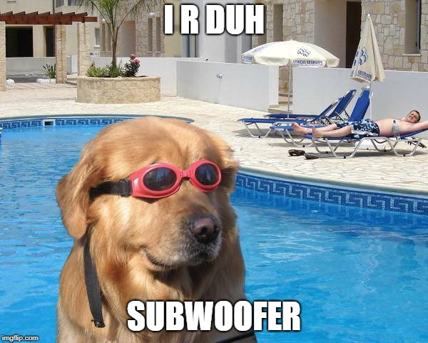 doggo | I R DUH SUBWOOFER | image tagged in doggo | made w/ Imgflip meme maker