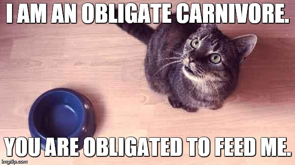 I AM AN OBLIGATE CARNIVORE. YOU ARE OBLIGATED TO FEED ME. | made w/ Imgflip meme maker
