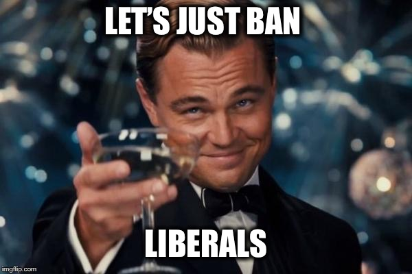 Leonardo Dicaprio Cheers Meme | LET'S JUST BAN LIBERALS | image tagged in memes,leonardo dicaprio cheers | made w/ Imgflip meme maker