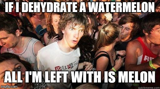 Sudden Realization | IF I DEHYDRATE A WATERMELON ALL I'M LEFT WITH IS MELON | image tagged in sudden realization | made w/ Imgflip meme maker