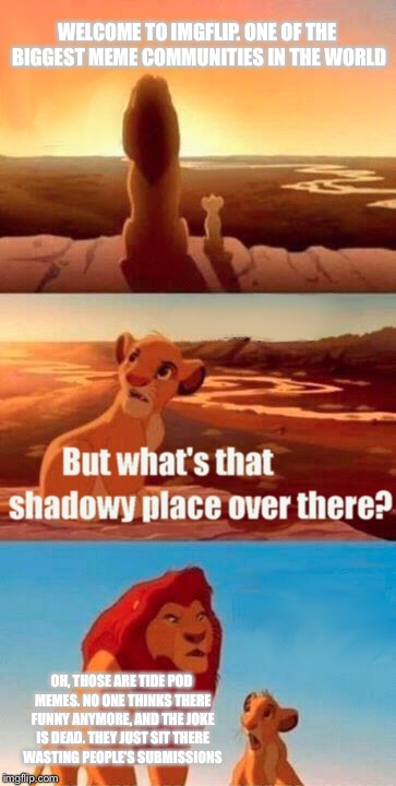 Simba Shadowy Place Meme | WELCOME TO IMGFLIP. ONE OF THE BIGGEST MEME COMMUNITIES IN THE WORLD OH, THOSE ARE TIDE POD MEMES. NO ONE THINKS THERE FUNNY ANYMORE, AND TH | image tagged in memes,simba shadowy place | made w/ Imgflip meme maker
