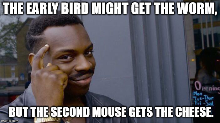 Roll Safe Think About It Meme | THE EARLY BIRD MIGHT GET THE WORM, BUT THE SECOND MOUSE GETS THE CHEESE. | image tagged in memes,roll safe think about it | made w/ Imgflip meme maker