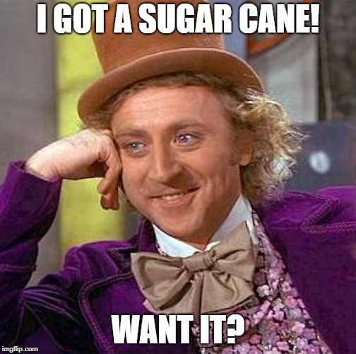 Creepy Condescending Wonka Meme | I GOT A SUGAR CANE! WANT IT? | image tagged in memes,creepy condescending wonka | made w/ Imgflip meme maker