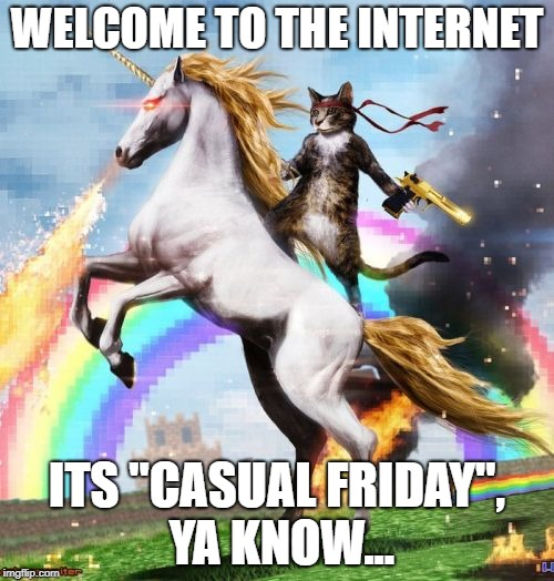 "Welcome To The Internets Meme | WELCOME TO THE INTERNET ITS ""CASUAL FRIDAY"", YA KNOW... 