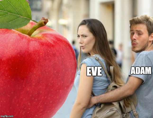 Distracted Adam and Eve. A Bible Series meme. Stay tuned for more  | ADAM EVE | image tagged in memes,funny,distracted boyfriend,genesis,bible,distracted girlfriend | made w/ Imgflip meme maker