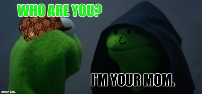 Evil Kermit Meme | WHO ARE YOU? I'M YOUR MOM. | image tagged in memes,evil kermit,scumbag | made w/ Imgflip meme maker