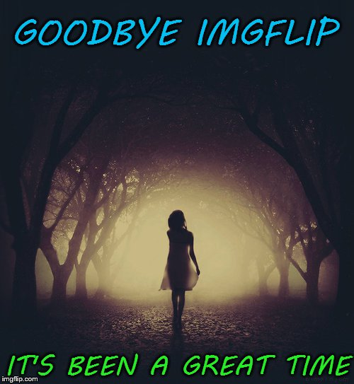 ~see comments~ |  GOODBYE IMGFLIP; IT'S BEEN A GREAT TIME | image tagged in walk in shadow night,goodbye | made w/ Imgflip meme maker