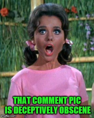 THAT COMMENT PIC IS DECEPTIVELY OBSCENE | made w/ Imgflip meme maker