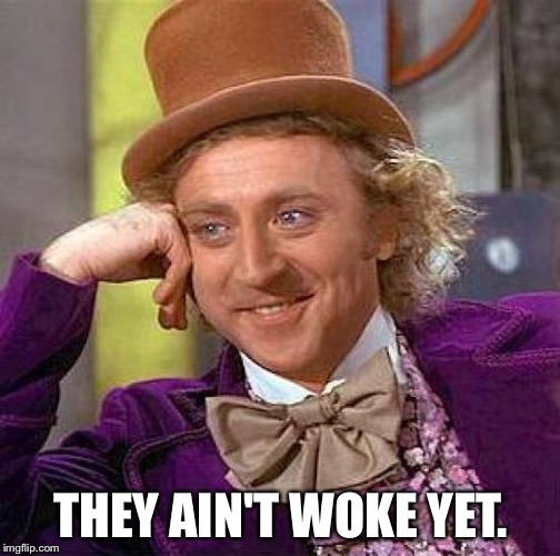 Creepy Condescending Wonka Meme | THEY AIN'T WOKE YET. | image tagged in memes,creepy condescending wonka | made w/ Imgflip meme maker