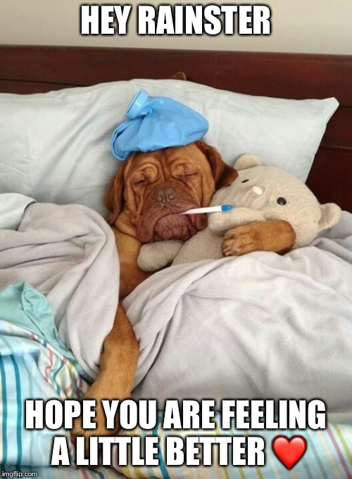 Sick Dog | HEY RAINSTER HOPE YOU ARE FEELING A LITTLE BETTER ❤️ | image tagged in sick dog | made w/ Imgflip meme maker