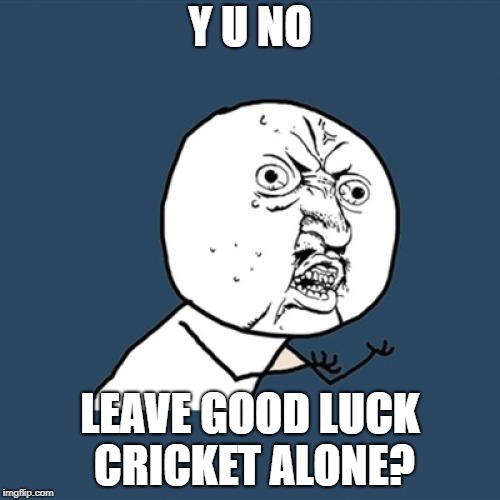 Y U No Meme | Y U NO LEAVE GOOD LUCK CRICKET ALONE? | image tagged in memes,y u no | made w/ Imgflip meme maker