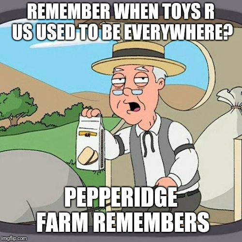 Pepperidge Farm Remembers Meme | REMEMBER WHEN TOYS R US USED TO BE EVERYWHERE? PEPPERIDGE FARM REMEMBERS | image tagged in memes,pepperidge farm remembers,toys r us | made w/ Imgflip meme maker