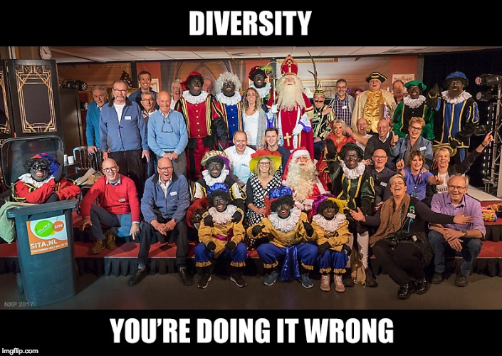 image tagged in diversity you're doing it wrong | made w/ Imgflip meme maker