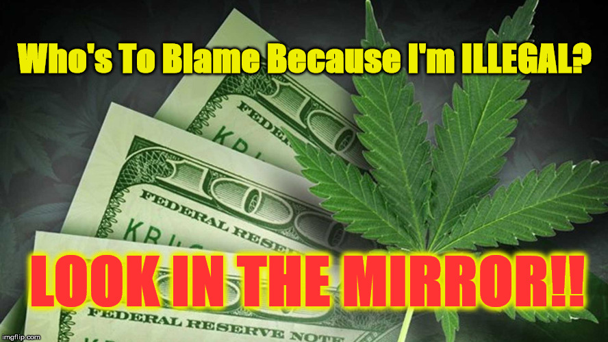 Who's To Blame Because I'm ILLEGAL? LOOK IN THE MIRROR!! | image tagged in follow the money | made w/ Imgflip meme maker