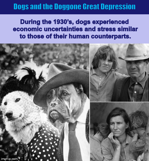 Dogs and the Doggone Great Depression | image tagged in dog,dogs,dogs dressed like humans,great depression,funny,memes | made w/ Imgflip meme maker
