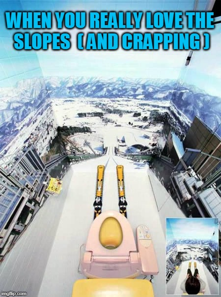 WHEN YOU REALLY LOVE THE SLOPES  ( AND CRAPPING ) | image tagged in toilet,skiing,art | made w/ Imgflip meme maker