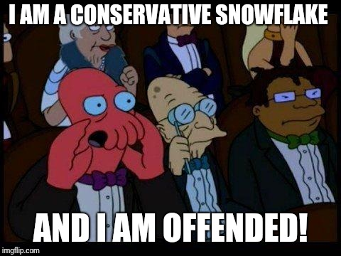 You Should Feel Bad Zoidberg |  I AM A CONSERVATIVE SNOWFLAKE; AND I AM OFFENDED! | image tagged in memes,you should feel bad zoidberg | made w/ Imgflip meme maker