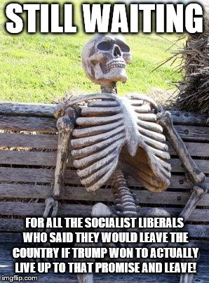 Waiting Skeleton Meme | STILL WAITING FOR ALL THE SOCIALIST LIBERALS WHO SAID THEY WOULD LEAVE THE COUNTRY IF TRUMP WON TO ACTUALLY LIVE UP TO THAT PROMISE AND LEAV | image tagged in memes,waiting skeleton | made w/ Imgflip meme maker