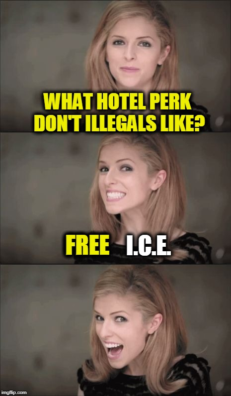 A Basket of Deportables | WHAT HOTEL PERK DON'T ILLEGALS LIKE? FREE    I.C.E. FREE | image tagged in memes,bad pun anna kendrick,funny,mxm | made w/ Imgflip meme maker