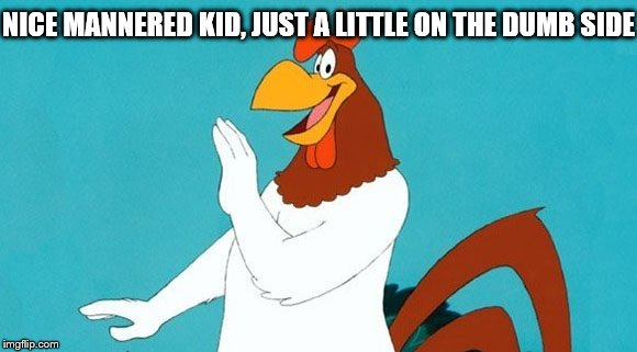 foghorn leghorn | NICE MANNERED KID, JUST A LITTLE ON THE DUMB SIDE | image tagged in foghorn leghorn | made w/ Imgflip meme maker
