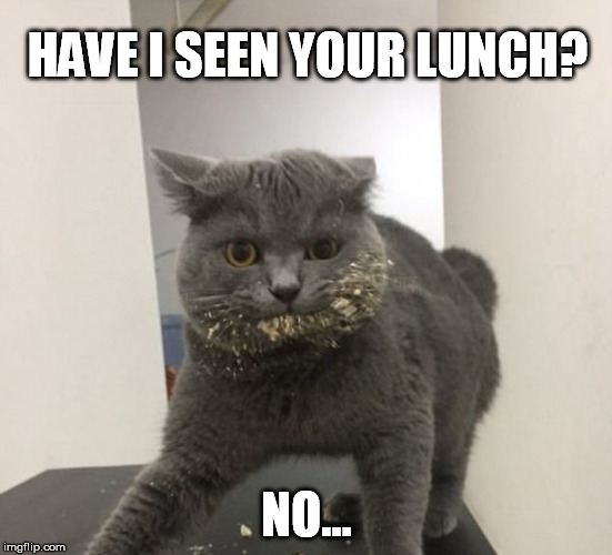 HAVE I SEEN YOUR LUNCH? NO... | made w/ Imgflip meme maker