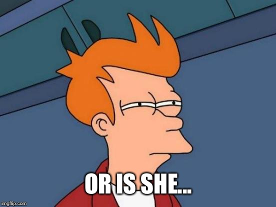 Futurama Fry Meme | OR IS SHE... | image tagged in memes,futurama fry | made w/ Imgflip meme maker