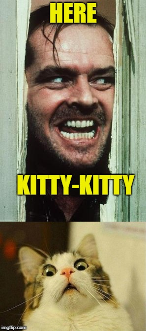 Here's Johnny's Cat  | HERE KITTY-KITTY | image tagged in memes,scared cat,jack nicholson,heres johnny | made w/ Imgflip meme maker