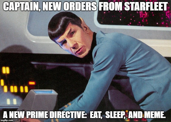 It's No Life... Not As We Know It | CAPTAIN, NEW ORDERS FROM STARFLEET A NEW PRIME DIRECTIVE:  EAT,  SLEEP,  AND MEME. | image tagged in it's life jim,but not as we know it,memes | made w/ Imgflip meme maker