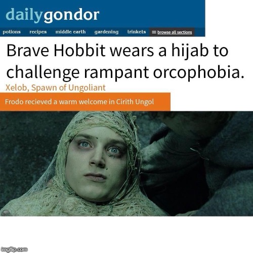 Way to go Frodo! Frodo has been bravely protesting the orcophobic bigots living in middle-earth. #OrcPride #OrcLivesMatter | image tagged in liberal,logic,in,a,nutshell | made w/ Imgflip meme maker
