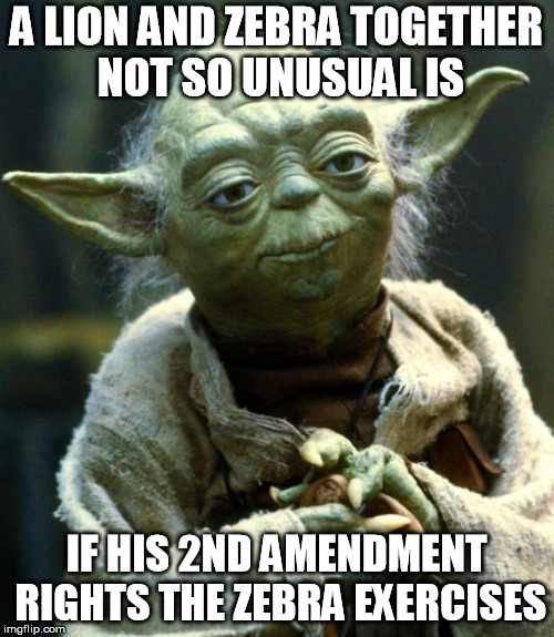 Star Wars Yoda Meme | A LION AND ZEBRA TOGETHER NOT SO UNUSUAL IS IF HIS 2ND AMENDMENT RIGHTS THE ZEBRA EXERCISES | image tagged in memes,star wars yoda | made w/ Imgflip meme maker