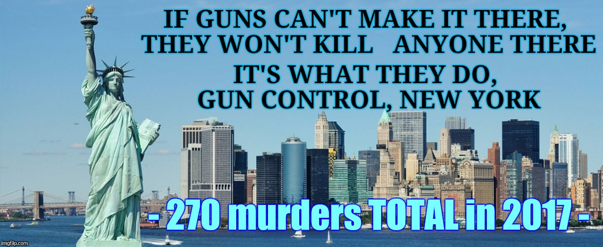 NYC, NY, safest big city in USA | - 270 murders TOTAL in 2017 - | image tagged in nyc ny safest big city in usa | made w/ Imgflip meme maker