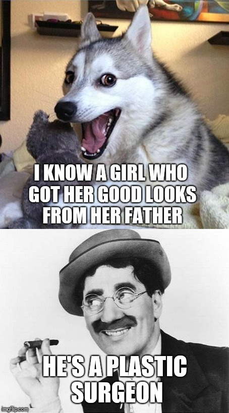 Bad Pun Dog and Groucho | I KNOW A GIRL WHO GOT HER GOOD LOOKS FROM HER FATHER HE'S A PLASTIC SURGEON | image tagged in bad pun dog,groucho marx,memes,funny memes | made w/ Imgflip meme maker