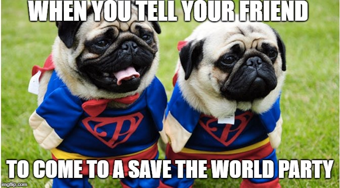 WHEN YOU TELL YOUR FRIEND TO COME TO A SAVE THE WORLD PARTY | image tagged in pugs,cute,superman,fortnite,funny | made w/ Imgflip meme maker