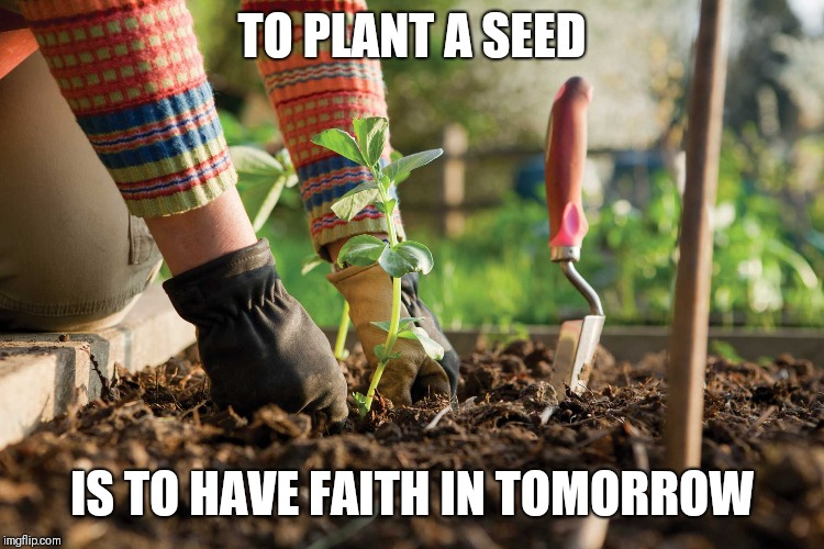 TO PLANT A SEED IS TO HAVE FAITH IN TOMORROW | image tagged in gardening | made w/ Imgflip meme maker