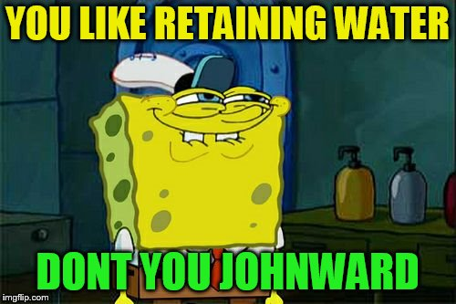 Dont You Squidward Meme | YOU LIKE RETAINING WATER DONT YOU JOHNWARD | image tagged in memes,dont you squidward | made w/ Imgflip meme maker