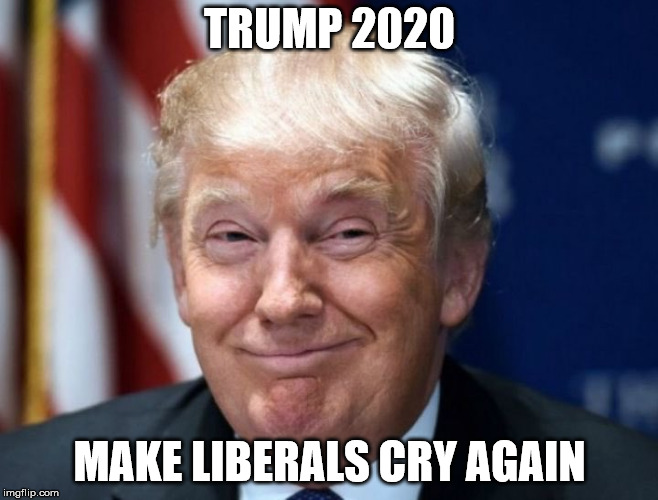 Can't wait to see Liberals sobbing and crying like little babies when Trump is re-elected. | TRUMP 2020 MAKE LIBERALS CRY AGAIN | image tagged in clifton shepherd cliffshep,donald trump approves,maga,trump2020 | made w/ Imgflip meme maker