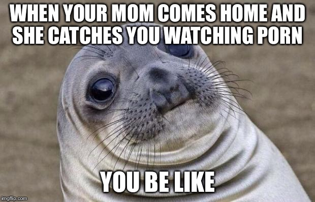 Awkward Moment Sealion Meme | WHEN YOUR MOM COMES HOME AND SHE CATCHES YOU WATCHING PORN YOU BE LIKE | image tagged in memes,awkward moment sealion | made w/ Imgflip meme maker