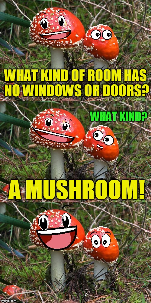 Mushroom Jokes (A reallyitsjohn template) My Childhood Joke | WHAT KIND OF ROOM HAS NO WINDOWS OR DOORS? A MUSHROOM! WHAT KIND? | image tagged in mushroom joke,jokes,reallyitsjohn,fungi,bad puns,mushrooms | made w/ Imgflip meme maker