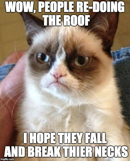 Grumpy Cat Meme | WOW, PEOPLE RE-DOING THE ROOF I HOPE THEY FALL AND BREAK THIER NECKS | image tagged in memes,grumpy cat | made w/ Imgflip meme maker