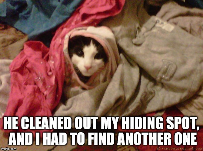 HE CLEANED OUT MY HIDING SPOT, AND I HAD TO FIND ANOTHER ONE | made w/ Imgflip meme maker