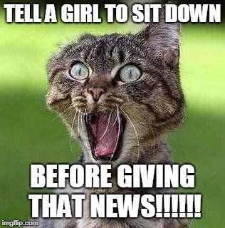 Shocked Cat | TELL A GIRL TO SIT DOWN BEFORE GIVING THAT NEWS!!!!!! | image tagged in shocked cat | made w/ Imgflip meme maker